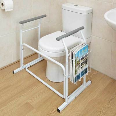 Toilet Safety Rail