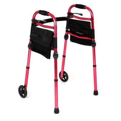 Pack and Go Walker with Carry Bag